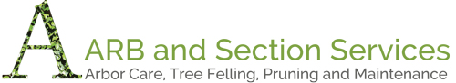ARB and Section Services logo